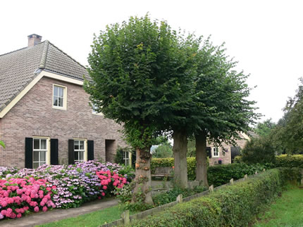 Bed en Breakfast Annapart in Drenthe